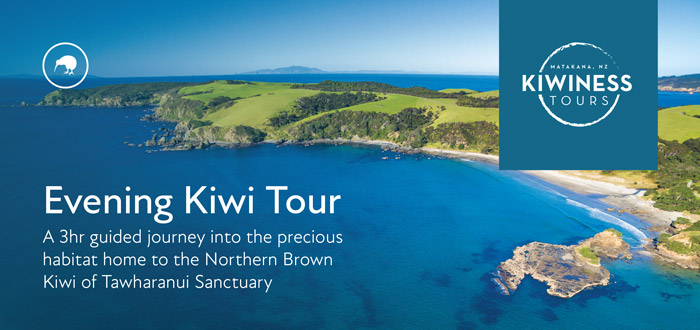 Kiwiness-Matakana-Night-Kiwi-Tour-Voucher_HR-1